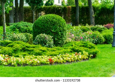 flower beds surrounded by flowers and trees in landscape design