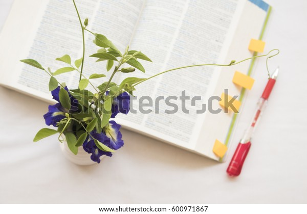 flower with book dictionary english for study