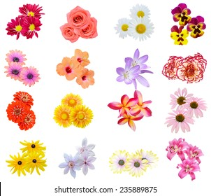 Flower bouquet: seasonal various Flowers isolated