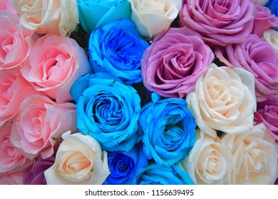 A flower bouquet for weddings with pink roses. Floriculture is a discipline of horticulture concerned with the cultivation of flowering and ornamental plants for gardens and for floristry.