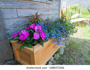 Flower boxes full of blooms next to coastal cottage in Maine