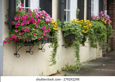 Flower boxes overflow with spring flowers on a historic home in Charleston, SC