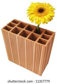 flower in brick