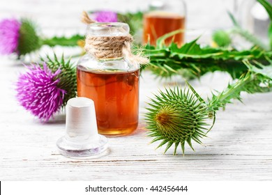 Flower and burdock extract.Buds medicinal wild plants burdock and burdocks medicinal tincture from it