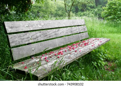 Flower covered wooden bench in the park