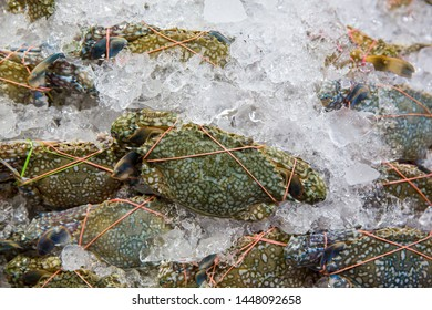 Flower crab, Blue swimmer crab, Blue manna crab, Sand crab, Portunus pelagicus . stack of fresh blue swimming crabs in seafood market.Seafood fresh background.Whole lobster with seafood