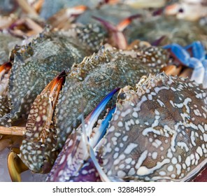 Flower crab, Blue crab, Blue swimmer crab, Blue manna crab, Sand crab seafood close-up in fish market