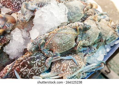 Flower crab is covered with ice at the market
