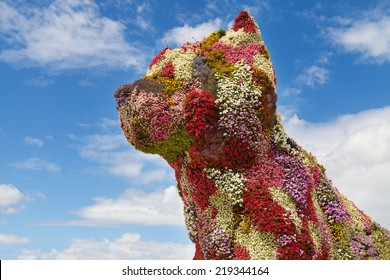 Flower Dog in Bilbao, Basque Country.