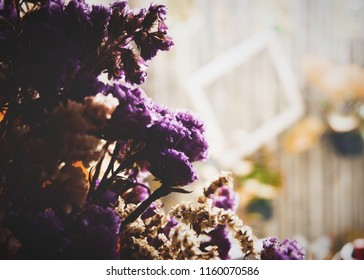 Flower dry of sea-lavender, statice, caspia or marsh-rosemary (Limonium sp.) in cafe. Brown and purple flower.