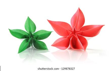 1528 Carambola Carambola Flower Images Royalty Free Stock Photos