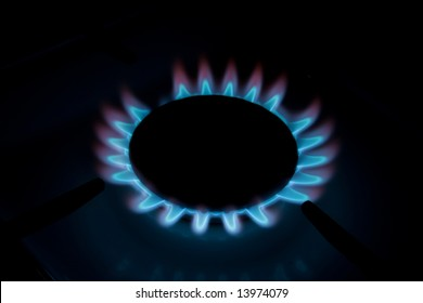 Flower of a flame of a house gas cooker in darkness