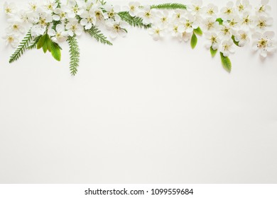 Flower flatlay on white paper, spring  floral background.