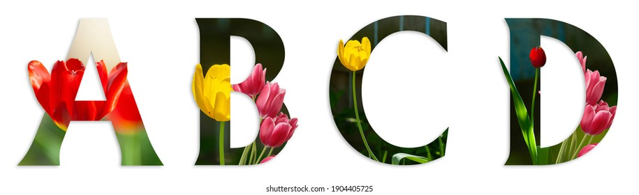 Flower font Alphabet a, b, c, d made of Real alive flowers with Precious paper cut shape of letter. Collection of brilliant flora font for your unique decoration in spring, summer  many concept idea