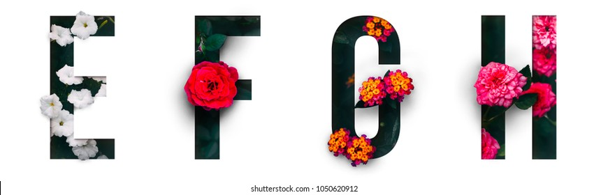 Flower font Alphabet e, f, g, h, made of Real alive flowers with Precious paper cut shape of letter.Collection of brilliant flora font for your unique decoration in spring, summer & many concept idea