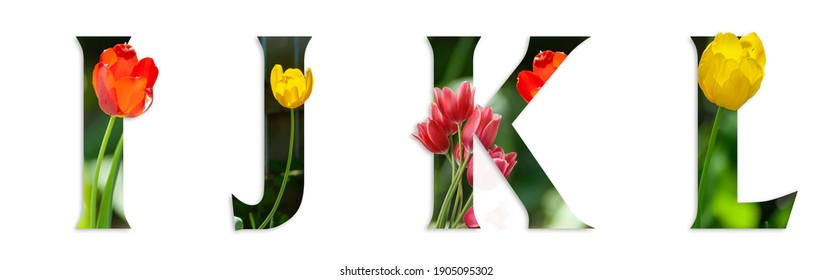 Flower font Alphabet i, j, k, l made of Real alive flowers with Precious paper cut shape of letter. Collection of brilliant flora font for your unique decoration in spring, summer many concept idea