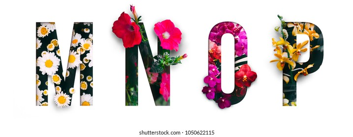 Flower font Alphabet m, n, o, p, made of Real alive flowers with Precious paper cut shape of letter. Collection of brilliant flora font for your unique decoration in spring, summer & many concept idea
