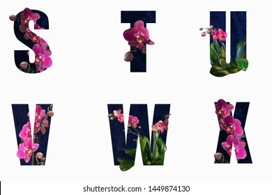 Flower font Alphabet s, t, u,v,w,x made of Real alive flowers with Precious paper cut shape of letter. Collection of brilliant flora font for your unique decoration in spring, concept idea