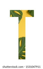 Flower font Alphabet T made of Real alive flowers monstera on yellow background with paper cut shape of letter. Collection of flora font