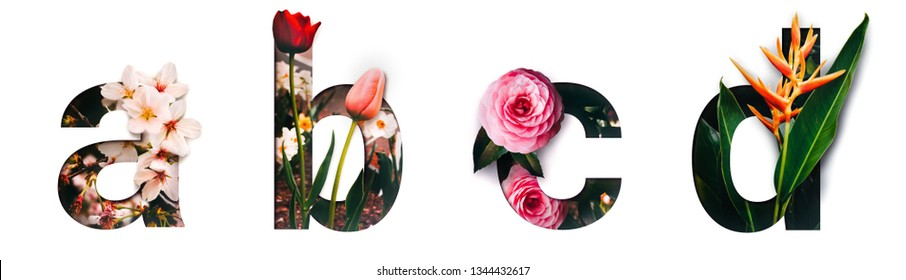 Flower font letter a, b, c, d Create with real alive flowers and Precious paper cut shape of alphabet. Collection of brilliant bloom flora font for your unique text, typography with many concept ideas