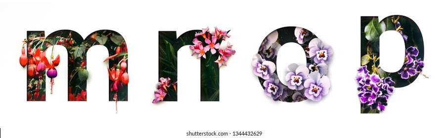 Flower font letter m, n, o, p Create with real alive flowers and Precious paper cut shape of alphabet. Collection of brilliant bloom flora font for your unique text, typography with many concept ideas