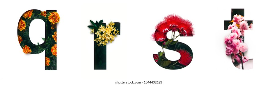 Flower font letter q, r, s, t Create with real alive flowers and Precious paper cut shape of alphabet. Collection of brilliant bloom flora font for your unique text, typography with many concept ideas