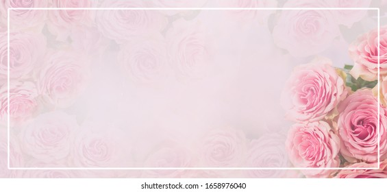 Flower frame, banner. Delicate card with pink roses on a soft white and pink background. Space for text