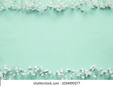 Flower frame. Small white flowers on a light green background. Gypsophila. Mother's Day, Easter, St. Valentine's Day. Flat lay, top view, copy space