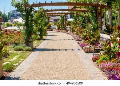Flower garden in Balatonfured  at Lake Balaton, Hungary.