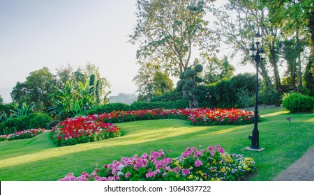 flower garden in north of Thailand, landscaped garden with flowerbed and colorful plants