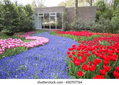 flower garden in a public park