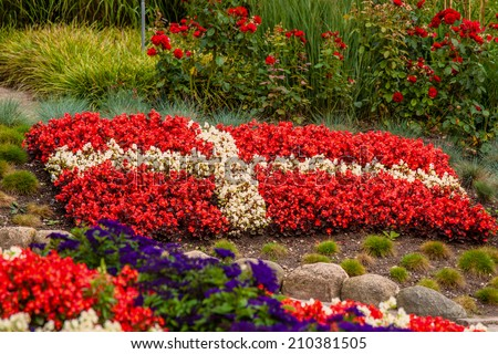 Flower garden red white flowers illustrating stock photo edit now flower garden with red and white flowers illustrating the danish flag mightylinksfo
