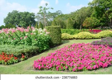 Flower garden  of Thailand