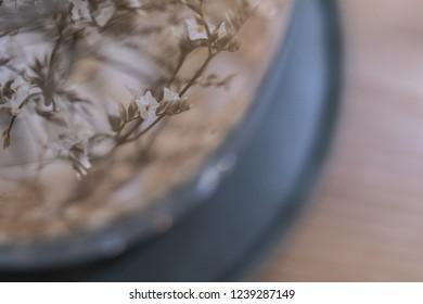 flower in glass jar