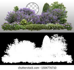 Flower Hedge isolated on transparent background via an alpha channel of great precision. Garden design. Lilacs flowers and green plants for landscaping. High quality cutout.