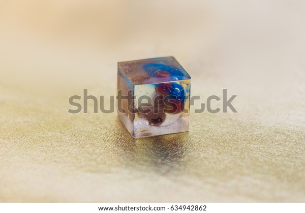 Flower inside of crystal made of epoxy resin close-up with bokeh on toned background shallow depth of field