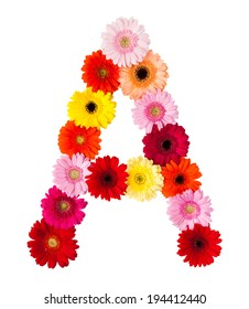 A flower letter on white background made of gerbera flowers