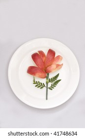 """Flower"" made out of sliced apples on white plate"