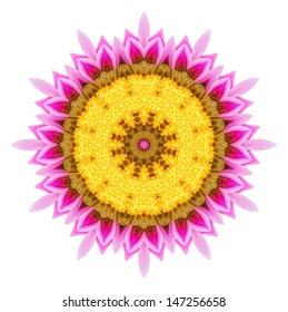 Flower mandala on white background