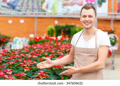 Flower manifold. Young handsome florist demonstrates particular kind of flowers.