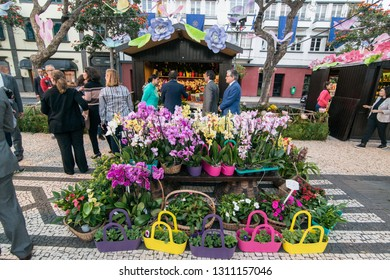 the flower market and market street at the avenida Arriaga at the Festa da Flor or Spring Flower Festival in the city of Funchal on the Island of Madeira of Portugal.  Madeira, Funchal, April, 2018