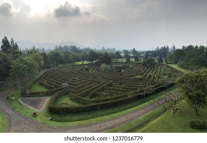 Flower maze park in the beautiful Nusantara Flower Garden, Puncak West Java Indonesia