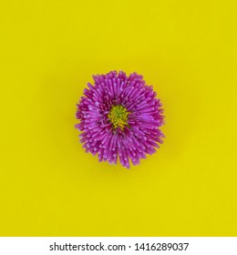 Minimalist Wallpapers Stock Photos Images Photography