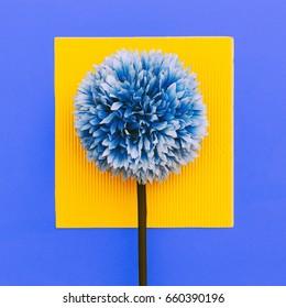 Flower on geometry background. Minimal art