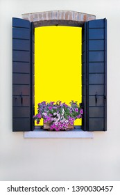 flower on window with isolated die cut path