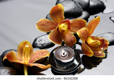 Flower orange orchid with burning candle and zen stones