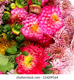 Flower pattern from asters, dahlias and chrysanthemums