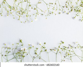 Flower pattern of wildflowers. Composition of flowers and plants. Top view. Floral abstract background. Small white flowers on a blue paper background.  Flower concept.