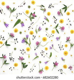 Flower pattern of wildflowers. Composition of flowers and plants. Top view. Floral abstract background. Flower concept. Bright multicolored flowers isolated on white background.