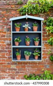 Flower plant wall display